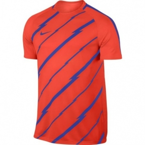 Football jersey Nike Dry Squad