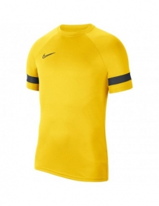 Nike Dri-FIT Academy M CW6101-719