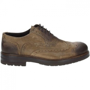 Oxfords Exton 693