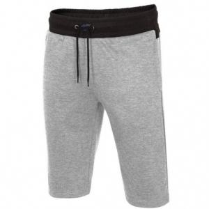 Shorts 4F M H4L19-SKMD003