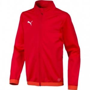 Sweatshirt Puma Liga Training