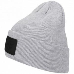 Winter hat 4F M H4Z19-CAM064