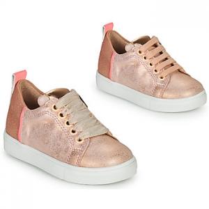 Xαμηλά Sneakers Acebos 5330-RAME