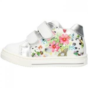 Xαμηλά Sneakers Balocchi 101298