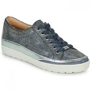 Xαμηλά Sneakers Caprice BASKO